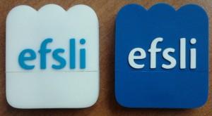 efsli memory stick