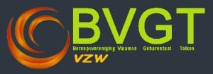 logo bvgt